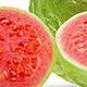 Vůně - Guava (0)